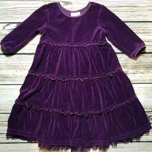 Hanna Andersson size 4 100 purple dress